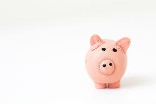 piggy bank fabian-blank-78637.jpg